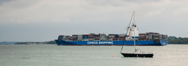 COSCO Shipping Lines Archives - Ocean Insights